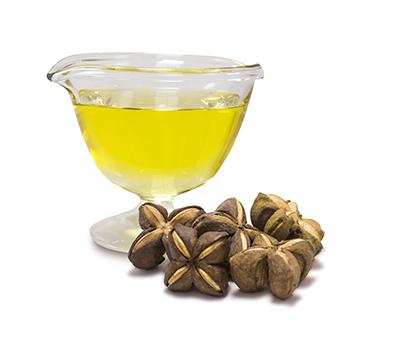 naturik_specialty-oils-sachainchi-pic